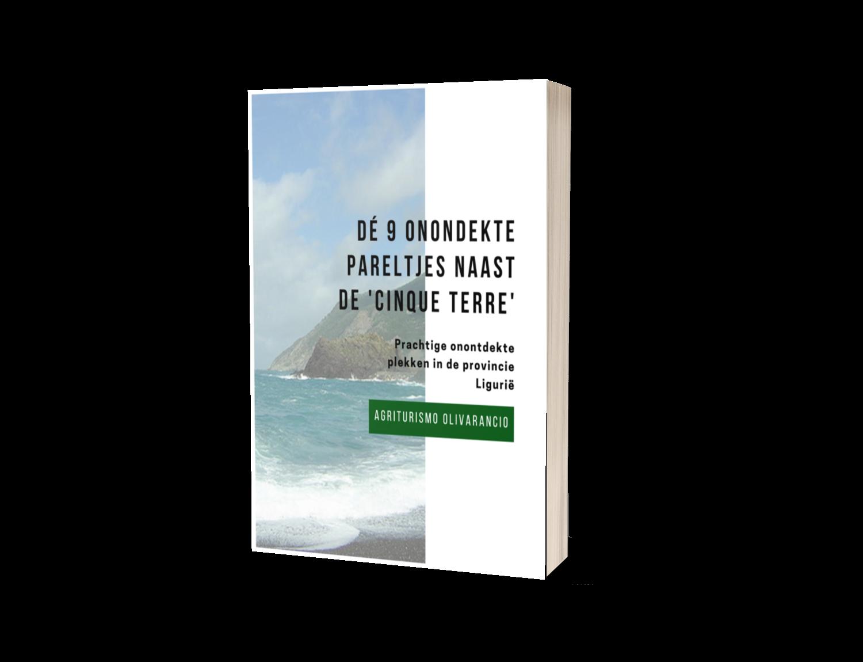 gratis e book